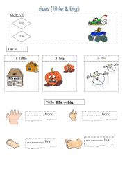 English Worksheets: sizes little & big