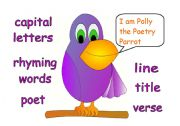 English Worksheets: Polly the Parrot