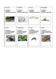 English Worksheet: Fish and reptiles cards 1