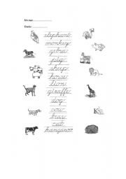 English Worksheets: spaguetty animals