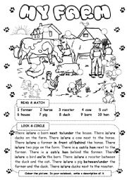 English Worksheet: My farm