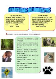 English Worksheets: HOMOPHONES AND HOMONYMS