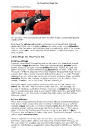 English Worksheets: cats and dogs