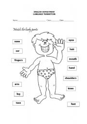 BODY PARTS - ESL worksheet by teacherdiana