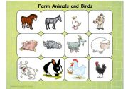English Worksheet: Farm Animals and Birds