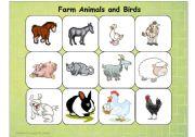 English Worksheets: Farm Animals and Birds
