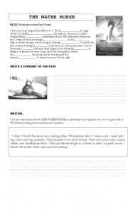 English Worksheet: THE WATER HORSE