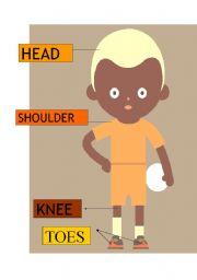 English Worksheets: head-shoulder-knee-toes