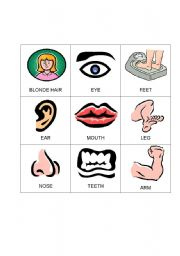 English Worksheets: Body Bingo 3