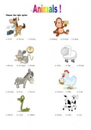 English Worksheets: fun with animals