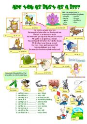 English Worksheets: ARE YOU AS BUSY AS A BEE?