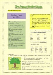 English Worksheets: Present Perfect   Grammar-guide and Practice