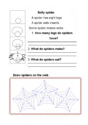 English Worksheets: Sally spider