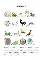 how to build english vocabulary