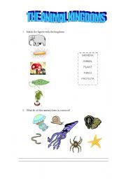 English Worksheets: animal kingdoms