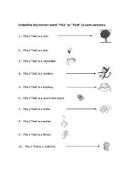 English worksheets: This / That (1st grade elementary)