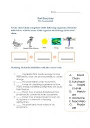 English Worksheet: pond ecosystems assessment