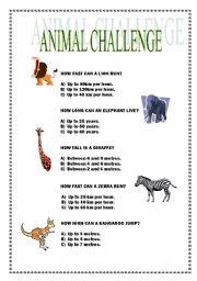 English Worksheets: ANIMAL CHALLENGE