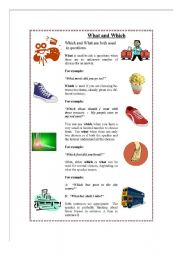 English Worksheets: Explanation for the use of What and Which