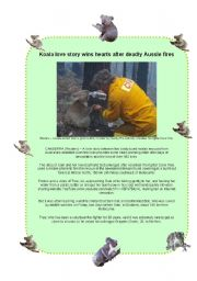 English Worksheets: Sam the Koala is saved from the Bush Fires (3 pages)
