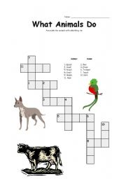 English Worksheets: What Animals Do