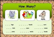 English Worksheets: How Many