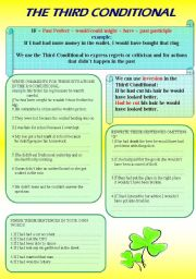 English Worksheet: The Third Conditional 3/3