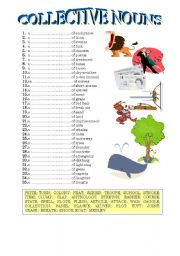 English Worksheets: collective nouns