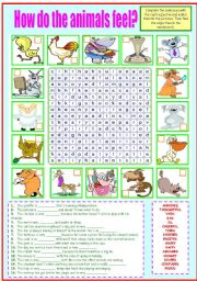 English Worksheet: HOW DO THE ANIMALS FEEL?