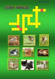 English Worksheet: Baby Animals - a crossword