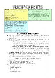 English Worksheets: Reports