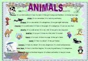 English Worksheets: animals reading