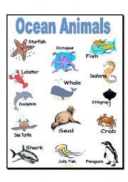 English Worksheets: Ocean Animals