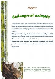 English Worksheet: Project: endangered animals (7 pages)