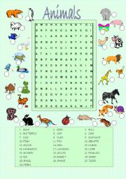 English Worksheet: Animals wordsearch and matching