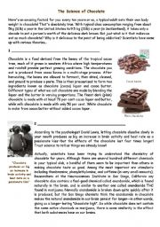 English Worksheets: Science of Chocolate - Part 1