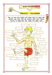 English Worksheets: BODY VOCABULARY