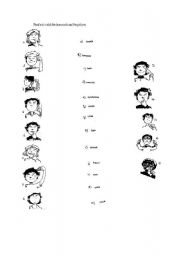 English Worksheets: face words