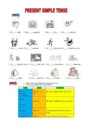 English worksheet: Present Simple exercises