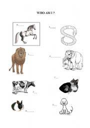 English Worksheets: Animals worksheet