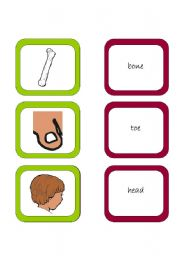 English Worksheets: Memory card game (3/3)