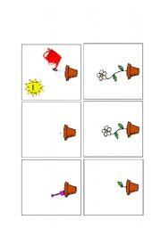 English Worksheets: planting sequence