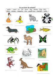 English Worksheets: Do you know the animals?