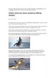 English Worksheets: Great White Shark killing display
