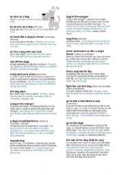 English Worksheets: DOG IN IDIOMS