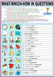 English worksheet: WHAT - WHICH - HOW - IN QUESTIONS