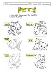 English Worksheets: My pets