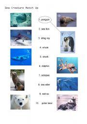 English Worksheets: Sea Animal Matching