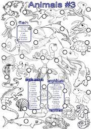 English Worksheets: Animals #3