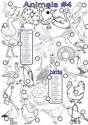 English Worksheets: animals #4